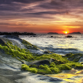 Sunset by BRYON PHILIP - Landscapes Sunsets & Sunrises ( red, green, sunset, sea, cloud, rock, seascape, beach, landscape )