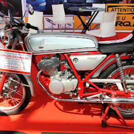 HONDA DREAM 50 CC by Bambang Setiawan - Transportation Motorcycles ( honda, motorcycle, sale )