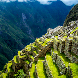Machu Picchu Terraces by Jared Stahl - Buildings & Architecture Public & Historical ( peru, latin america, green, cusco, city, history, mountains, jungle, south america, machu picchu, ruins, stones, incas, rocks )