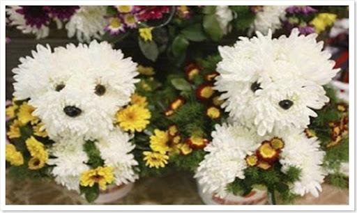 dog-flower-bouquet-1