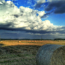 Field with Hay by Nat Bolfan-Stosic - Landscapes Prairies, Meadows & Fields ( field, sky, hay, summer, cloudy )