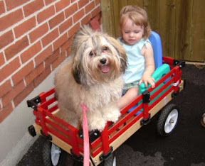havanese_and_kids