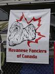 Havanese Fanciers of Canada 2005 Specialty