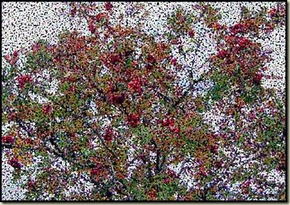 2813berries