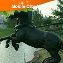Oklahoma City Street Map icon