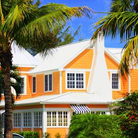 The Cottage by Elfie Back - Buildings & Architecture Homes ( blue, orange. color,  )