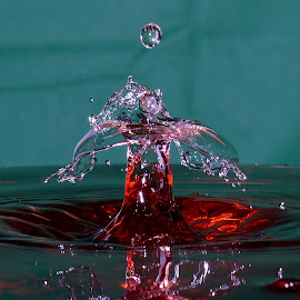 Water splash by Fred Øie - Abstract Water Drops & Splashes ( abstract )