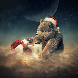 the gift by Even Liu - Digital Art Abstract ( bear, photomanipulation, evenliu, digital art, christmas, surreal )