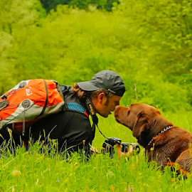 Assistance by Costin Mugurel - Animals - Dogs Playing ( mountains, nature, grass, green, photographer, dog )