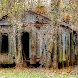 Abandoned by Mike Dougharty - Buildings & Architecture Decaying & Abandoned ( old, shack, louisiana, decay, abandoned,  )