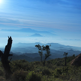 Mountain by Edy Suseno - Landscapes Mountains & Hills ( hill, mountain, mount )