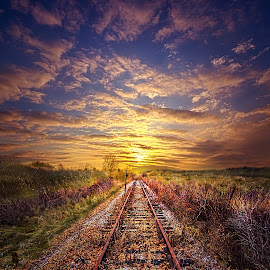 Stories to be Told by Phil Koch - Transportation Railway Tracks ( vertical, photograph, farmland, yellow, leaves, love, sky, nature, tree, autumn, train, flower, orange, twilight, agriculture, horizon, portrait, environment, dawn, season, railway, serene, trees, floral, inspirational, abandoned, natural light, wisconsin, ray, railroad, landscape, phil koch, spring, sun, photography, farm, rail, horizons, inspired, clouds, office, park, green, tracks, scenic, morning, shadows, wild flowers, field, red, fog, blue, sunset, peace, fall, meadow, summer, beam, earth, sunrise, landscapes, mist,  )