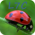 "L7C ""Loto Foot"" Calculator icon"