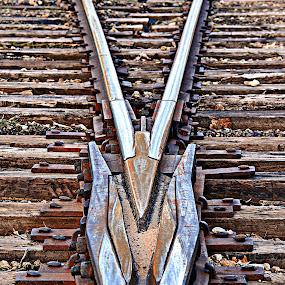 Cross Track by T Sco - Transportation Railway Tracks ( crossing, railway, rail, track, train, transportation )