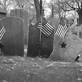 Soldiers Rest by Scott Strausser - Novices Only Objects & Still Life ( tombstone, flags, still life, still, objects )