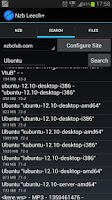 Screenshot of Nzb Leech - usenet downloader