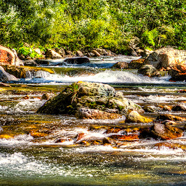 Water stream by Ioan Todor - Nature Up Close Water ( water, stream, nature )