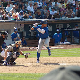 At Bat by Jesse Thrush - Sports & Fitness Baseball ( starlin, baseball, batting, castro, cubs, chicago, at bat )