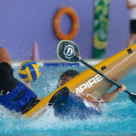 Canoe Polo by Eddie Seng - Sports & Fitness Other Sports ( canoe polo )