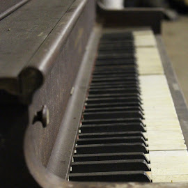 dusty ivory by Kimberly Mehrer - Artistic Objects Musical Instruments ( old, piano, keys, vintage, ivory, antique )