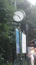 Zegar Na Przystanku Bagatela