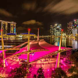 Esplanade Outdoor Theatre by Alinn Zet - City,  Street & Park  Skylines ( cityscapes, holiday, vacation, night photography, landscape, mood, mood factory, christmas, hanukkah, red, green, lights, artifical, lighting, colors, Kwanzaa, blue, black, celebrate, tis the season, festive )