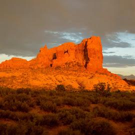 Desert Rocks, Arches National Park, Utah by Kathleen Koehlmoos - Landscapes Deserts ( moab utah, pretty light, arches national park, traveling across america, moab utah arches national park, united states tourism, golden light,  )