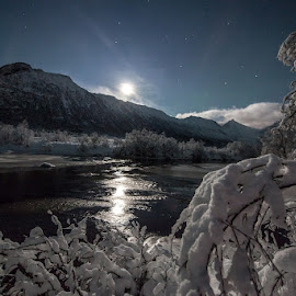 Moonlight by Benny Høynes - Landscapes Prairies, Meadows & Fields ( moon, auroras, winter, tree, snow, forest, river )