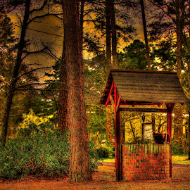 Old Well in HDR by Michael Thompson - Buildings & Architecture Other Exteriors ( hdr, detailed, cloudy, forest, well )