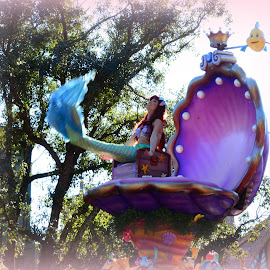 My Little Mermaid by Lorraine D.  Heaney - People Musicians & Entertainers
