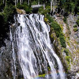 Narada Falls by Judy Rosanno - Landscapes Mountains & Hills ( mt. rainier national park, mt. rainier, waterfall, narada falls,  )