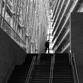 Montreal Architecture by Victor Mirontschuk - Buildings & Architecture Other Interior ( montreal, b&w, canada, buildings, architecture )