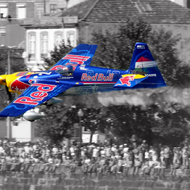 Red Bull Air Race by Antonio Amen - Transportation Airplanes