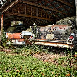 Barn Cars by Lou Plummer - Transportation Automobiles ( harnett county,  )