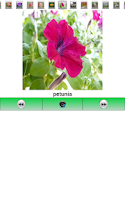 Screenshot of English Picture Dictionary 14