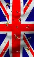 Screenshot of England flag free lwp