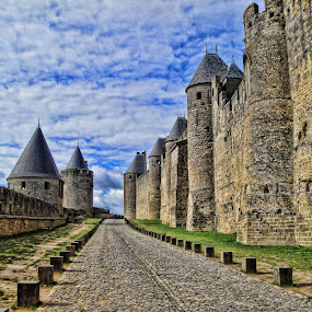 CARCASSONE by Gianluca Presto - Buildings & Architecture Public & Historical ( castello, mura, travel, medioevo, historic, walls, ancient, towers, carcassone, cloudy, france, castle, middle age, stones, wall, torri,  )