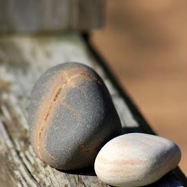 Mia's Rocks by Rhonda Mullen - Nature Up Close Rock & Stone