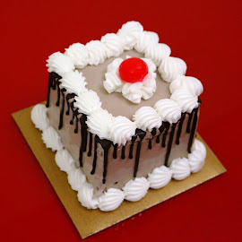 Icecream Cake by Ansari Joshi - Food & Drink Cooking & Baking ( birthday, cake, celeberation, icecream )