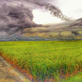 mendung by Edi Waluyo - Landscapes Weather ( dark cloud, dark, cloud, weather, black cloud,  )