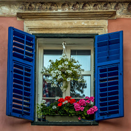 Blue window by Adrian Ioan Ciulea - Buildings & Architecture Other Exteriors ( home, building, window, blue, house )