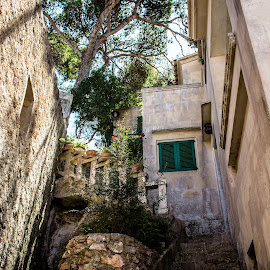 Old steps by Damir Roz - Buildings & Architecture Homes ( old town, steps, mallorca, rocks, cala figuera )