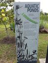 Aquatic Ponds