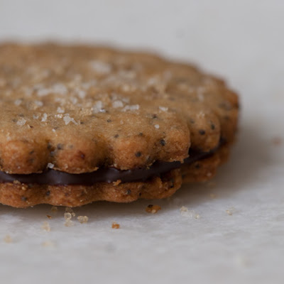 Brown Sugar Sandwich Cookie