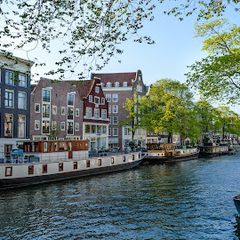 The Street of Amsterdam by Siniša Ciglenečki - City,  Street & Park  Historic Districts