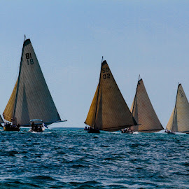 Exuma Regatta - 9782 by John Covin - Transportation Boats ( sailboats, exuma, sailboat racing,  )