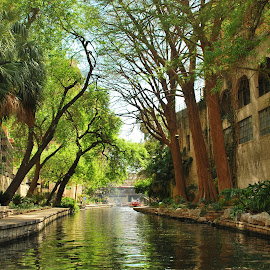 Riverwalk Scene,San Antonio,Texas by David Gilchrist - City,  Street & Park  Street Scenes ( streetscapes, texas, san antonio, riverwalk scene, city )