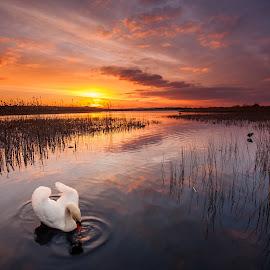 the last rays of the sun  by Łukasz Rabczyński - Landscapes Sunsets & Sunrises