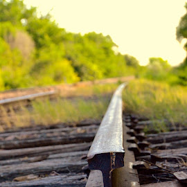 by Tyrell Heaton - Artistic Objects Still Life ( train tracks, railroad )