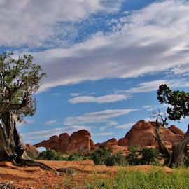 Skyline Arch, Utah by Erin Czech - Landscapes Deserts ( desert, arch, arches national park, utah, rock formation )